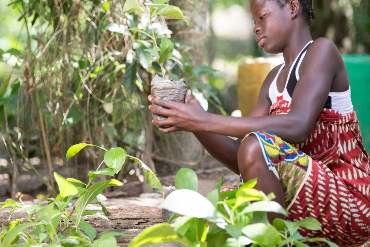 Kakaoanbau Elfenbeinküste Nachhaltigkeit9-KG-ivoryocoast-464